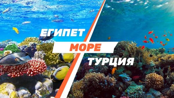 Сравнение отдыха на море в Турции и Египте